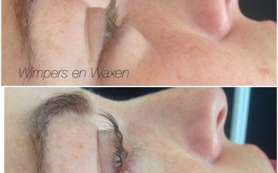 Lash Volume Lifting / Wimperlift